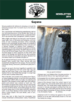 irish tree society newsletter 2014